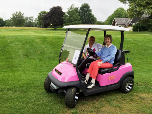 Pink Buggy Campaign